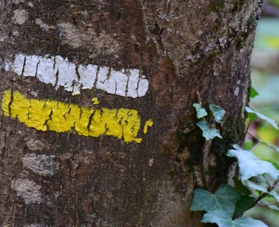 "Randonnée ""Le Col de Montreynaud"""