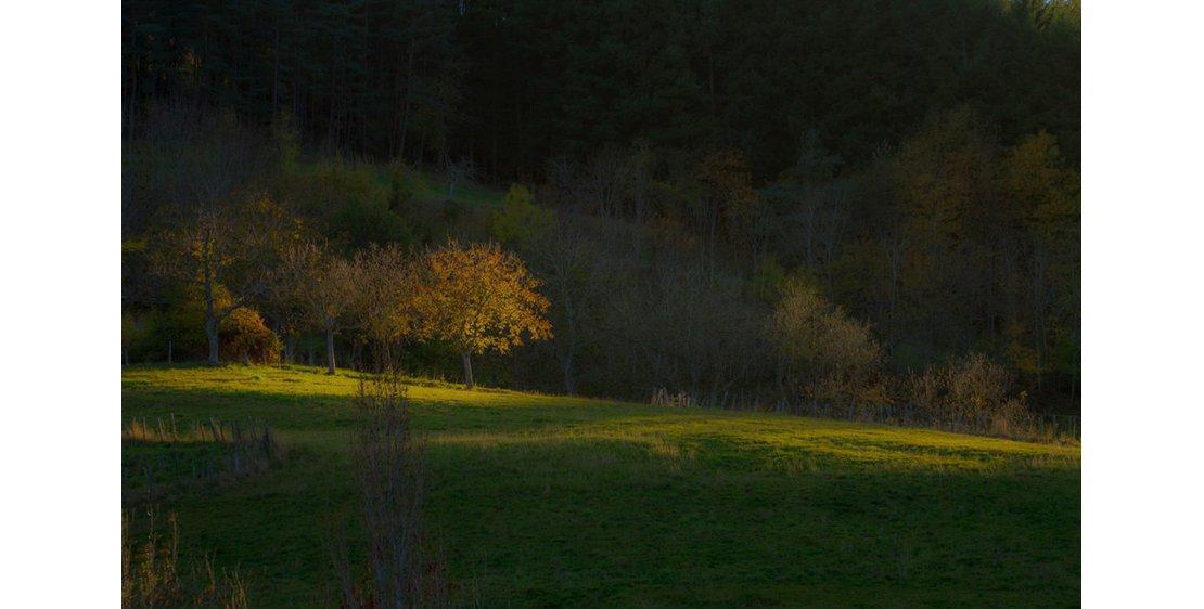 """Photo """"Le Serre de la Roue"""" hike"""