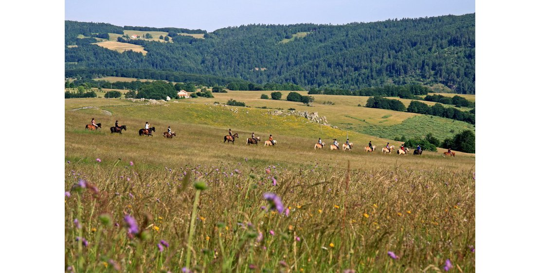Photo Horse-riding trail in the Monts d'Ardèche Nature Park