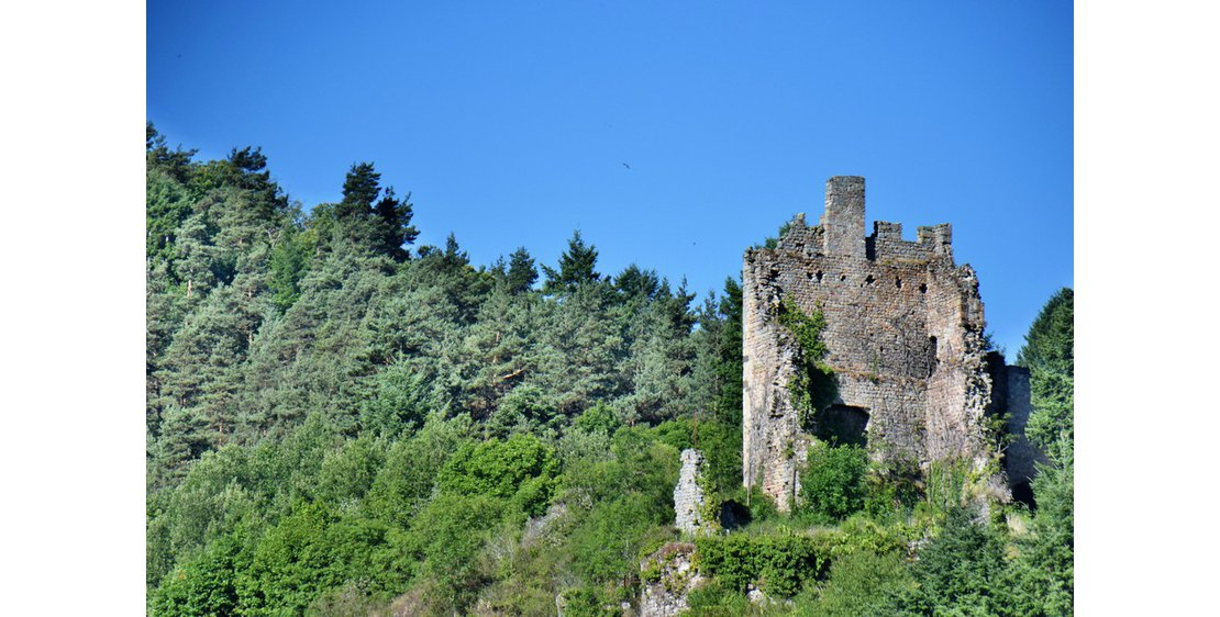 "Photo Hike ""Peychelard Castel"""