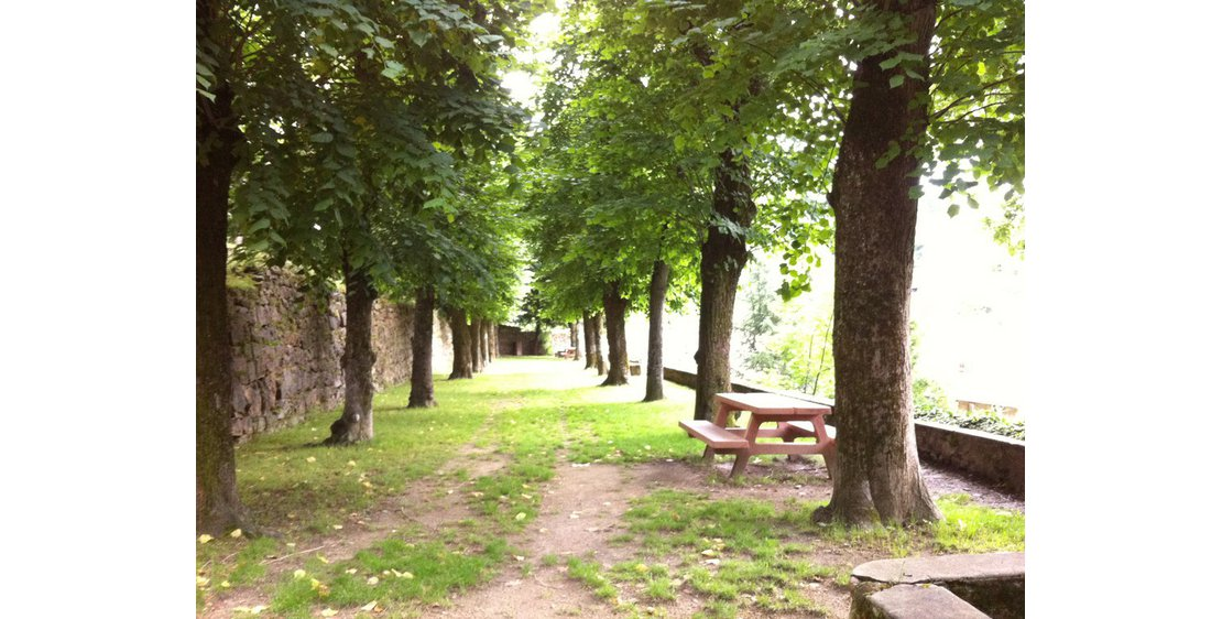 "Photo Aire de pique-nique ""Parc Seignobos"""
